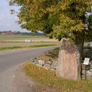 Runstenen U 375 vid Vidbo kyrka i Uppland. Stenen är rest efter Vinaman, som dog i Boge på Gotland. Foto Magnus Källström.
