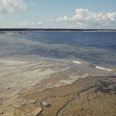 Kulturmiljöbild, okänd kustmiljö. Bilden troligen från 70-talet.