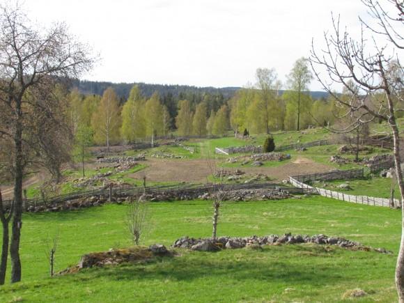 Kulturreservatet Åsens by, Jönköpings län