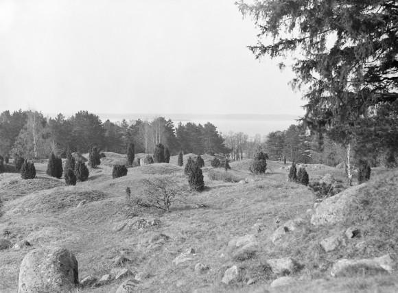Lämningar av den vikingatida stadsvallen på Birka / Björkö i Mälaren. Det vikingatida Birka och Hovgården från 700 till 900-talet är idag ett världsarv på UNESCO:s världsarvslista.