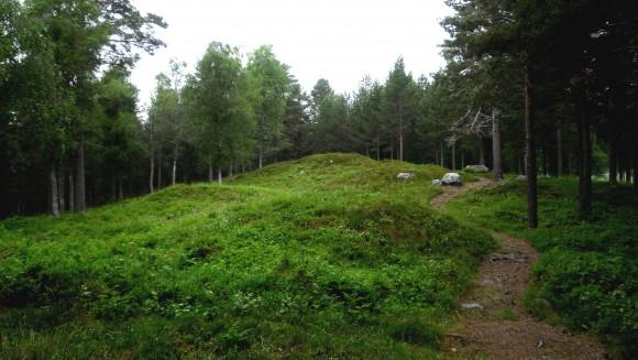 Gravhögsmiljö vid Arnäsbacken (RAÄ Arnäs 1:1)