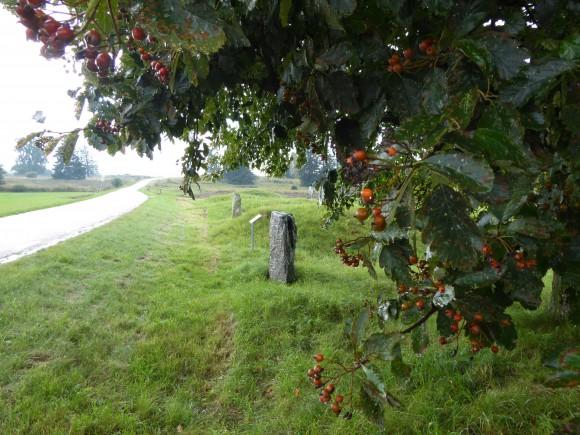 """Runstenen Ög 133 vid Häggestad i Heda, Östergötland. Texten lyder: """"Brodd reste denna sten efter Saxe, sin fader, och efter Udd, sin broder. Gud hjälpe dem."""" Hela familjen har tydligen fått namn efter vassa föremål."""