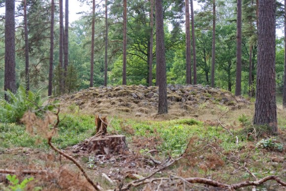Gravröse på gravfältet Vassrödjorna - Tranås