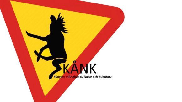 skank