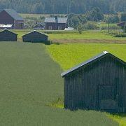 Ersättningar till jordbrukare för skötsel av natur- och kulturmiljöer kan ge större miljönytta till lägre kostnad visar en utvärdering från Riksantikvarieämbetet.