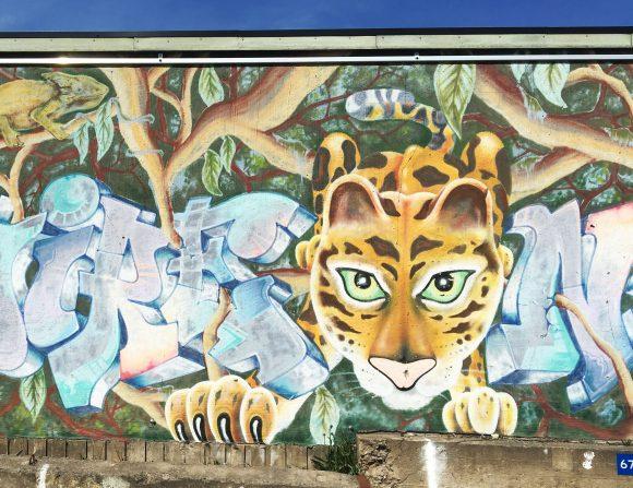 Om grafittimålningen Admire Nature får du veta mer på Kulturarvsdagen 10 september i Norrköping. Ett av de 240 arrangemangen som anordnas över hela landet.