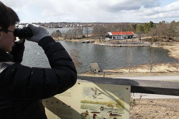 Besök Kulbacken på Kulturarvsdagen den 10 september och följ med på guidningar i närmiljön. Visningar av de historiska husen blandas med honungsslungning och fågelskådning.