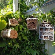 Naturvårdsslöjd i form av insektshotell.