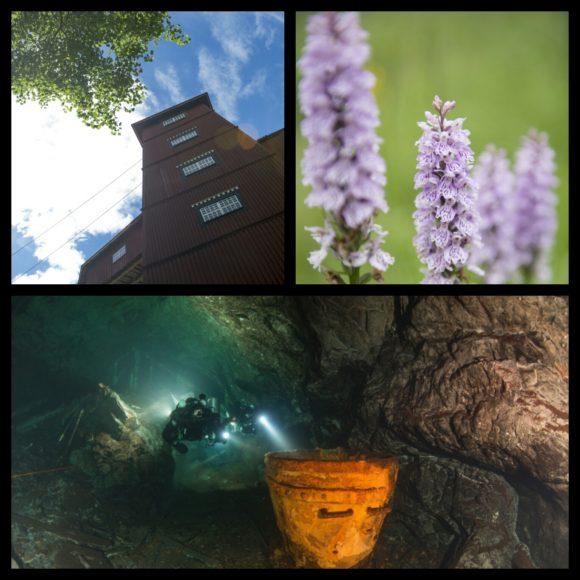 Långban gruv- och kulturby är en levande plats i Värmländska bergslagen. Platsen erbjuder fantastiska miljöer både ovan och under jord.