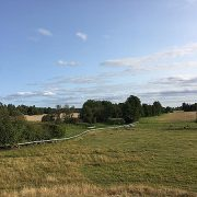 Besök Lammhagen i Tensta och upplev nya och gamla kulturlandskap på Kulturarvsdagen den 10 september.