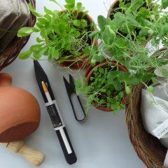 Ett urval varor för den trädgårdsintresserade såsom tumvattnare, prickelpinne och örtsax.