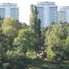Årsta skog och höghusen i Johanneshov.
