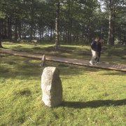Järnåldersgravfältet Mala stenar