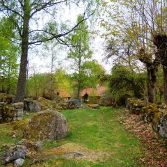 Kulturlandskapet kring Ire i Blekinge med stenmurar.