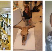 Till vänster: Skelettsalen. Mitten: 3D-scanning. Till höger: Maria Mostadius