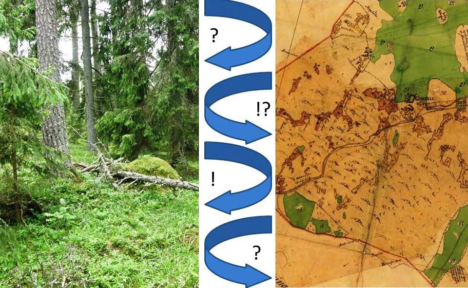 För att kunna tolka biologiskt kulturarv krävs att man växlar mellan historisk och ekologisk kunskap.