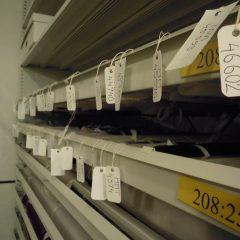 Lådor med museiföremål märkta med etiketter