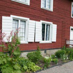 Rabatt med växter som odlats länge på Linnés Hammarby i Uppland.
