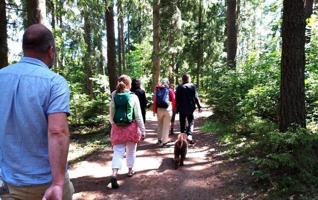 Människor som vandrar längs en stig i skogsmark