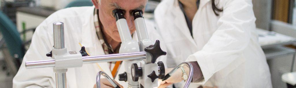 Närbild på två forskare i arbete