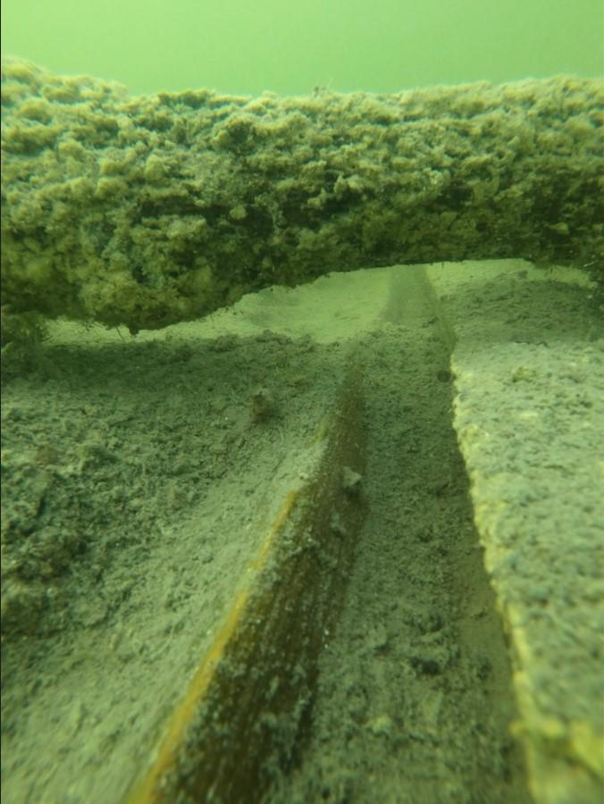 Undervattensbild på fornlämningen Bulverket i Tingstäde träsk på Gotland.