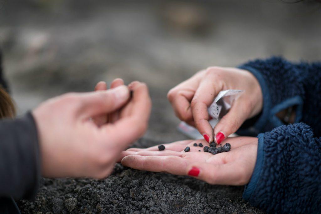 Närbild på händer som håller ett tiotal svarta pärlor.