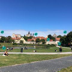 Almedalen i Visby en sommardag