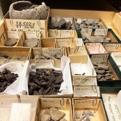 Bild av arkeologiska föremål ur samlingar, Medeltidsmuseet.