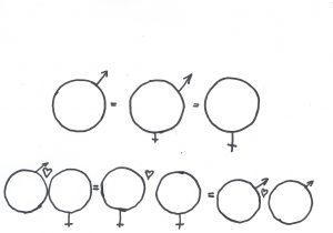 Teckning på mans och kvinnosymboler och hjärtan emellan samt mans och manssymboler med hjärtan emellan och kvinno och kvinnosymbopler med hjärta emellan